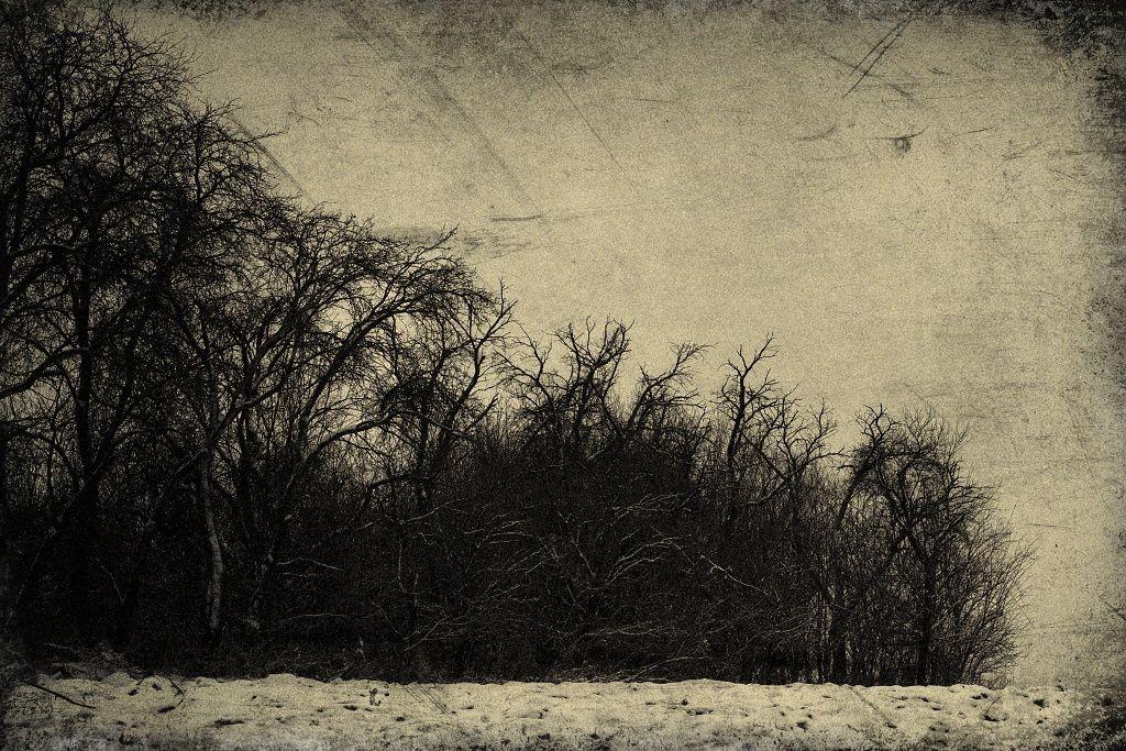 OLDM art fotografie